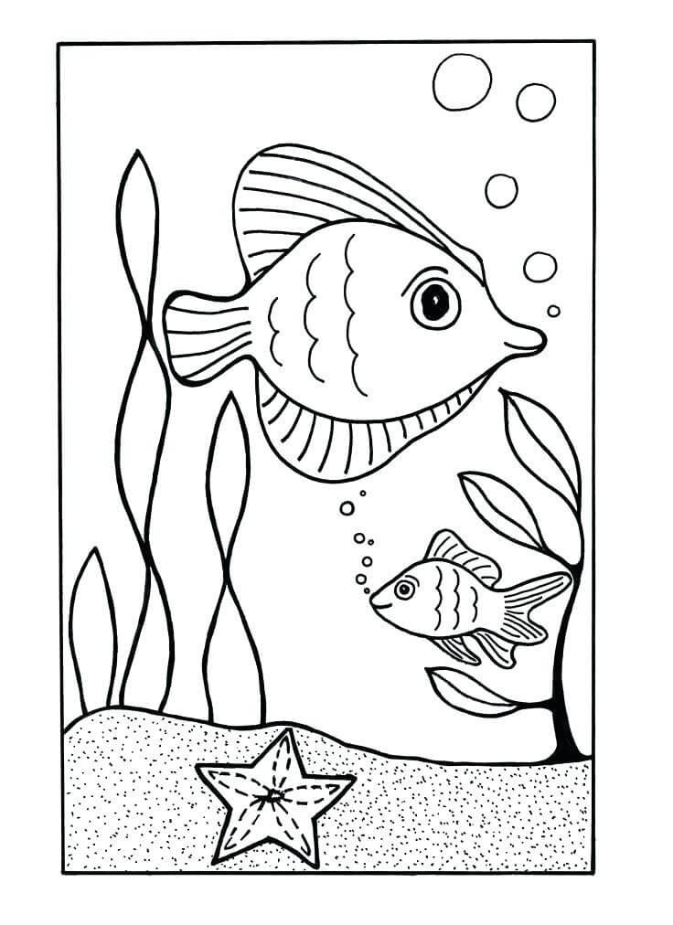 67 Gambar Hewan Laut Untuk Diwarnai Gratis Terbaik