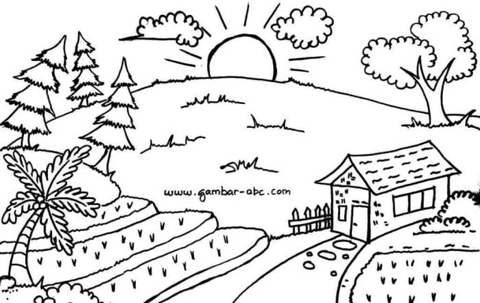 gambar mewarnai pemandangan desa sawah dan matahari