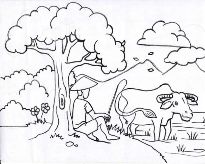 gambar mewarnai pemandangan desa petani dan kerbau