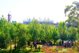 inside the Olympic Park (12)