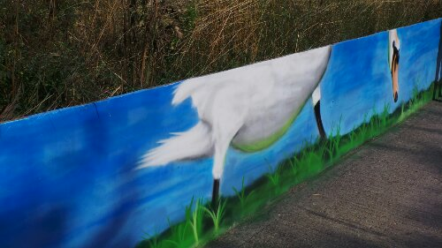 Boe painted a pair of swans