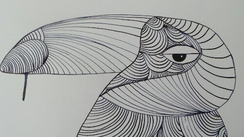 A Toucan from the same series