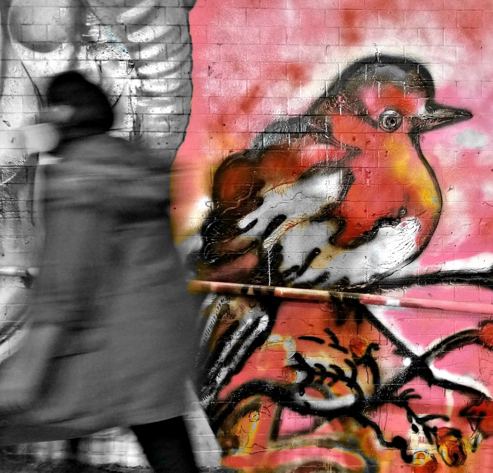 It was great to see my friend Lady Lash Dee come down and give mural painting a real go.  I love this cute little Robin and it will be great to see her work down in Leake Street more often