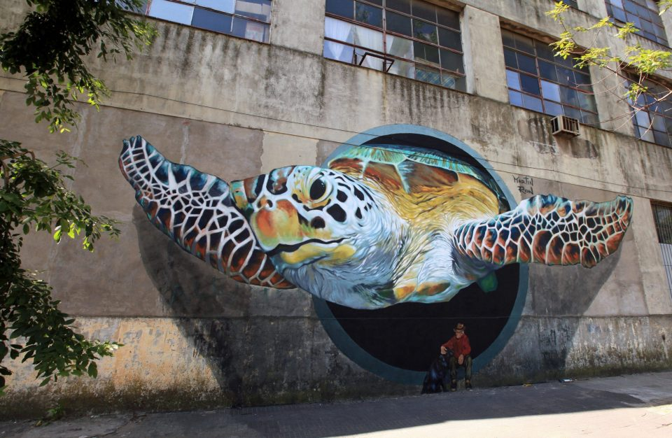Flying 3D sea turtle exploding out of a pipe on a factory wall.  Mural in Buenos Aires