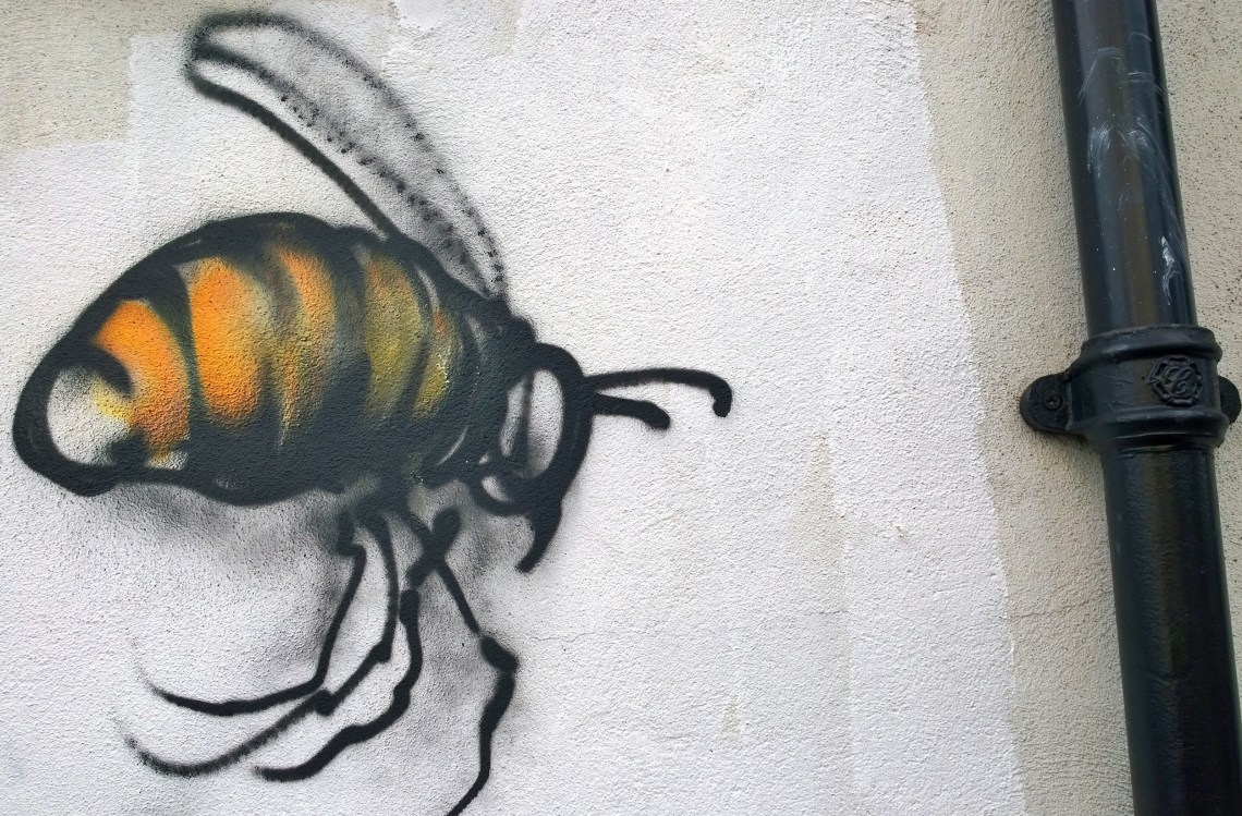 Bee street art by Jim Vision on Vallance Road