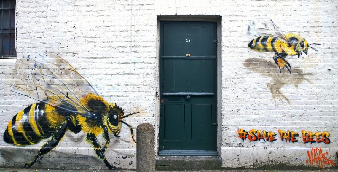 Bees on Ellsworth Street