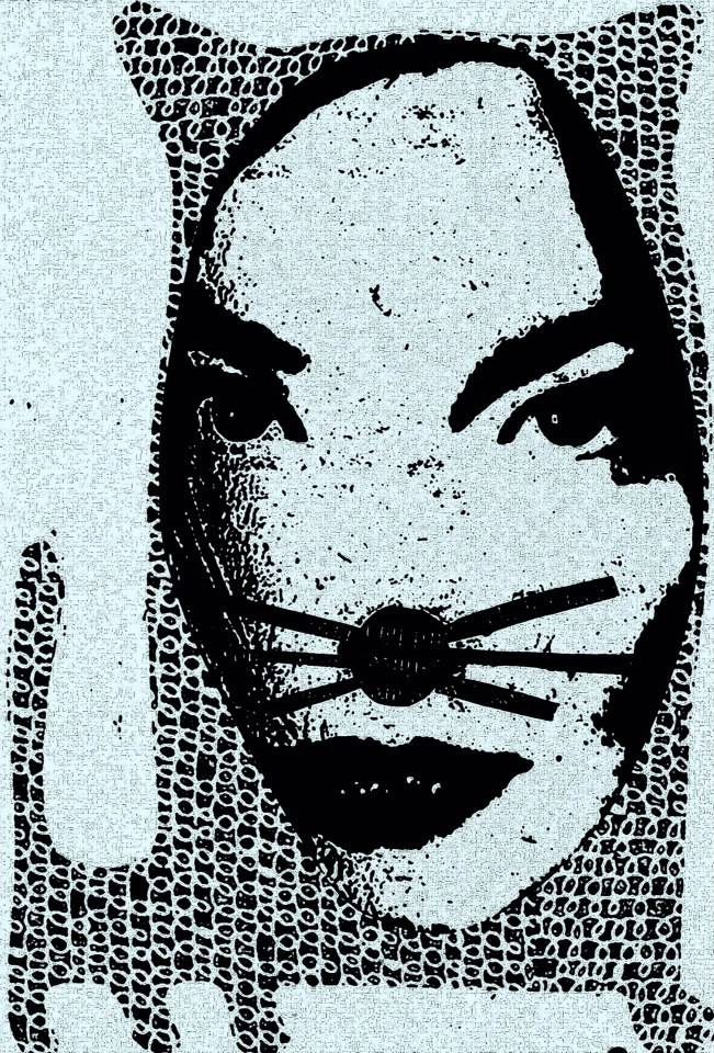 Bjork is a cat by Gary Russell