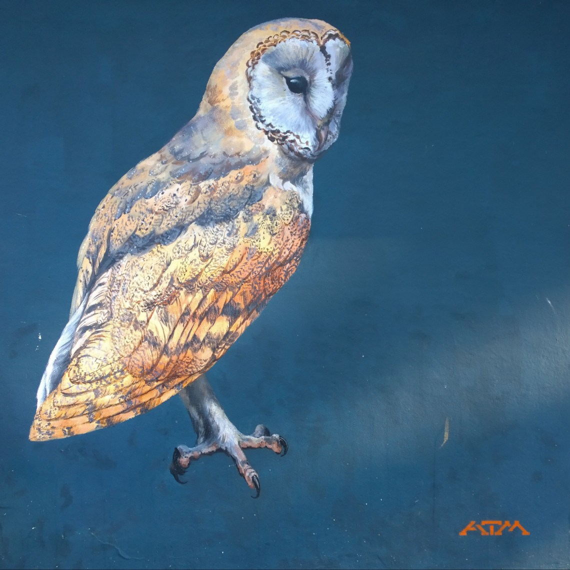 Painting of a barn owl on the side of Charles Hocking House in Acton