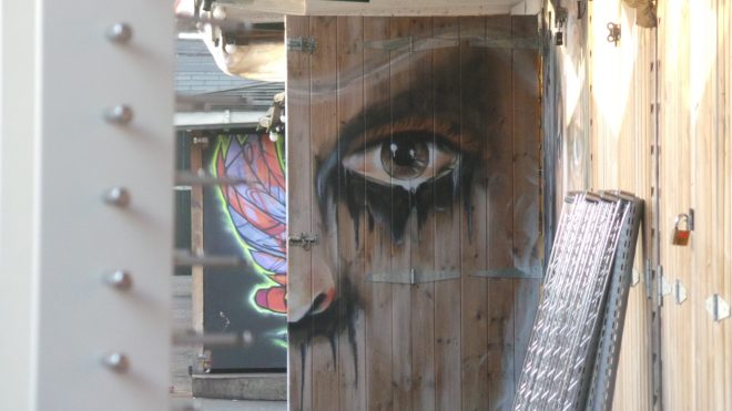 Nandon Mambo was just one of the artists to paint a shed