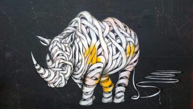 Rhino by Otto Schade