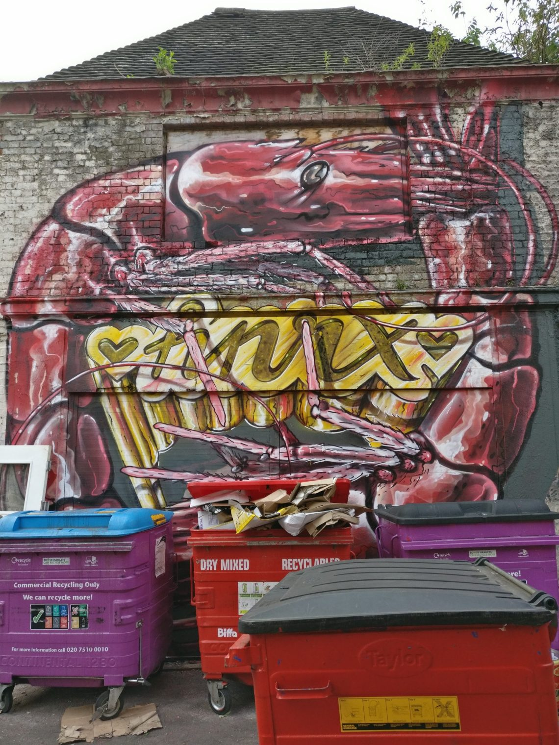 hnrx toynbee street
