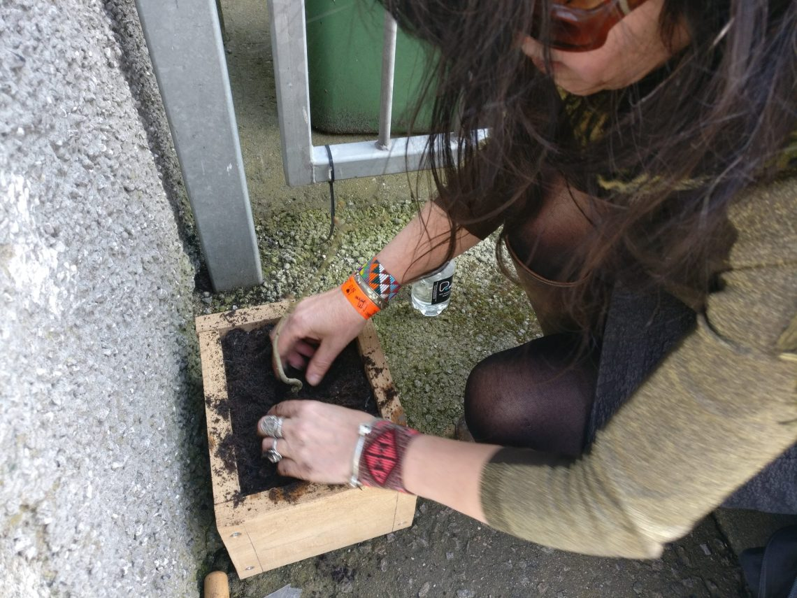 Karen Francesca planting her micro gardens in Aberdeen