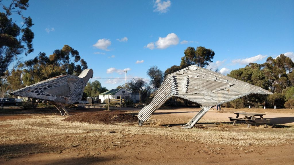 Two giant corrugated iron Mallee Fowl created by Phil Rigg in Patchewollock