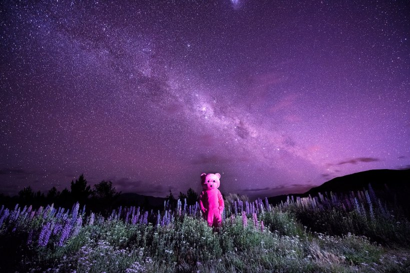Purple Star Light by LUAP featuring the Pink Bear