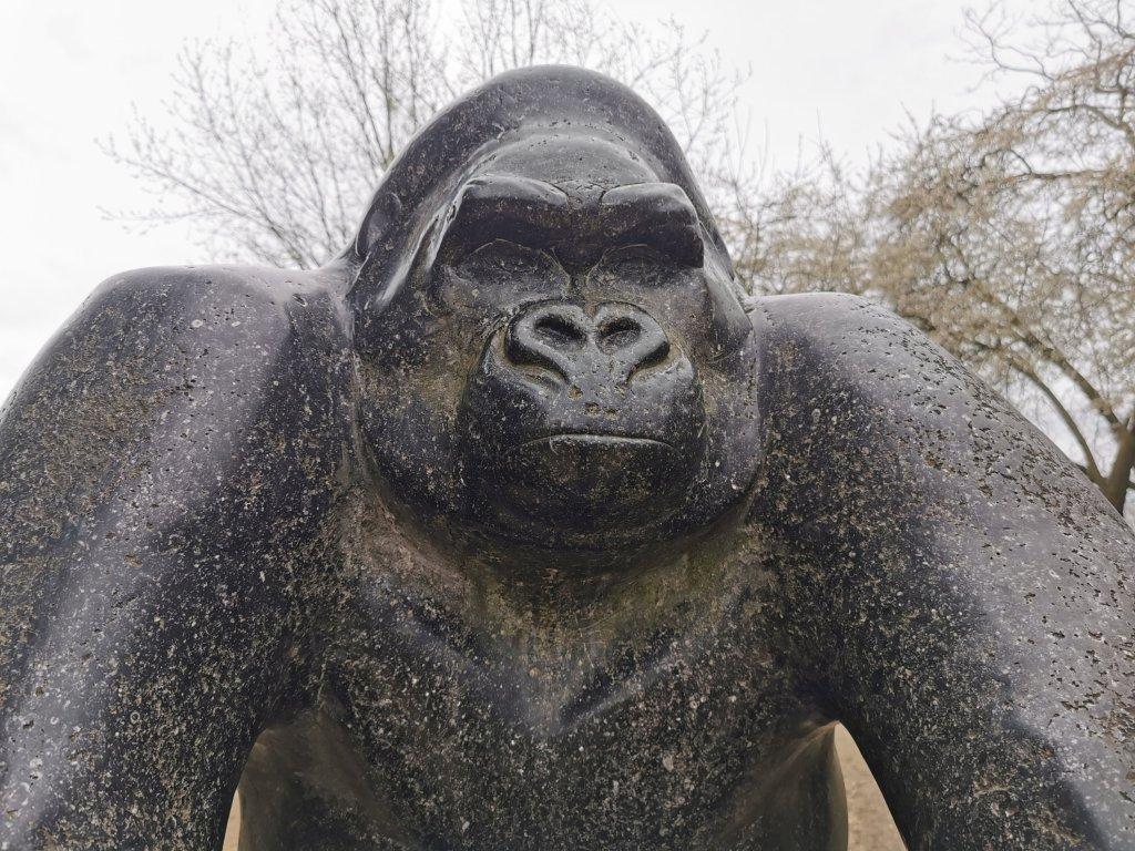 Gorilla by David Wynne in Crystal Palace