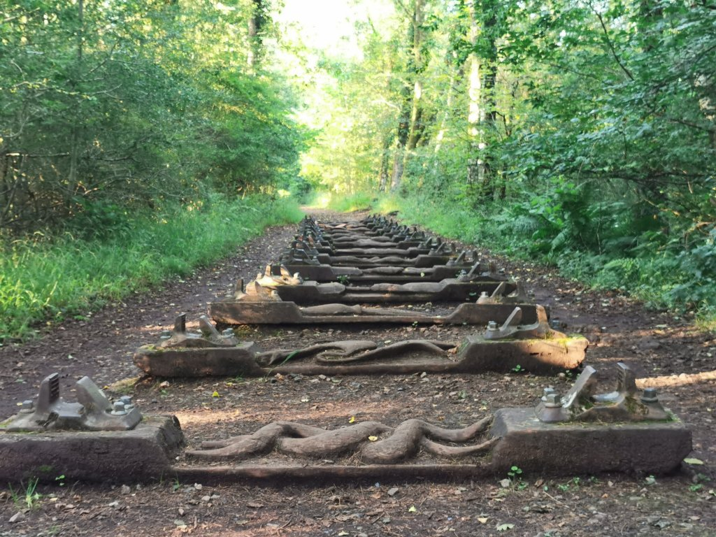 Iron Road by Keir Smith. The Forest of Dean sculpture trail is one of our picks for what to do around Gloucester