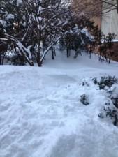Inspiring Kitchen snow storm