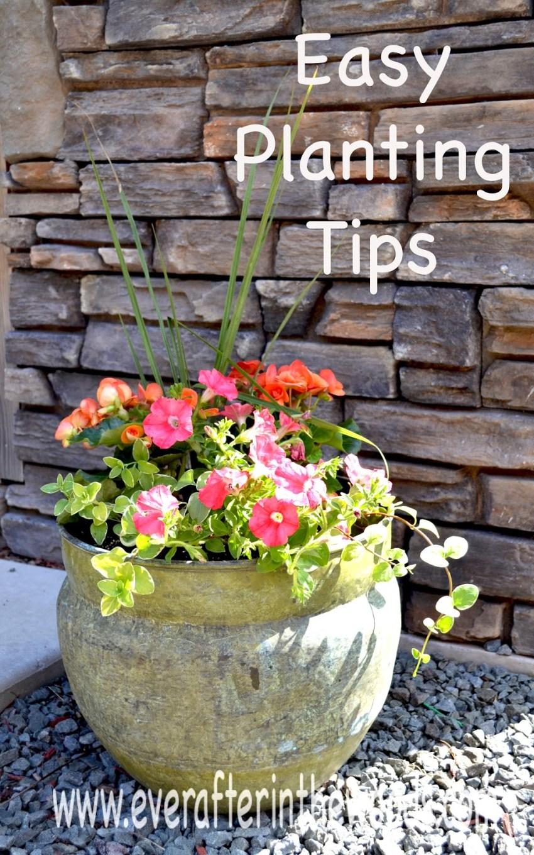 Spring Planting Tips