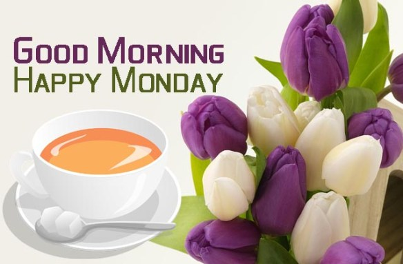 Top 100 Good Morning Images With Monday Wishes Hd Greetings Images