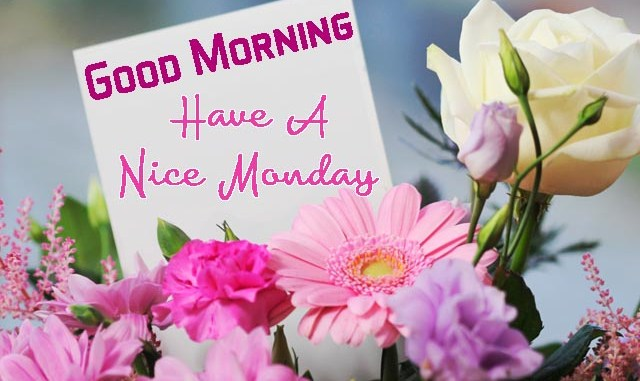 Happy monday images and quotes massages greetings sms photos for happy monday images and quotes massages greetings sms photos for whatsapp m4hsunfo