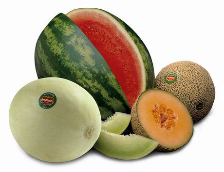 melons 8QSye 30213