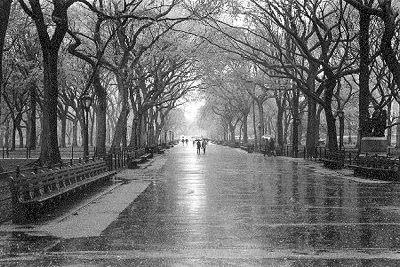 rainy day zhnfR 19369