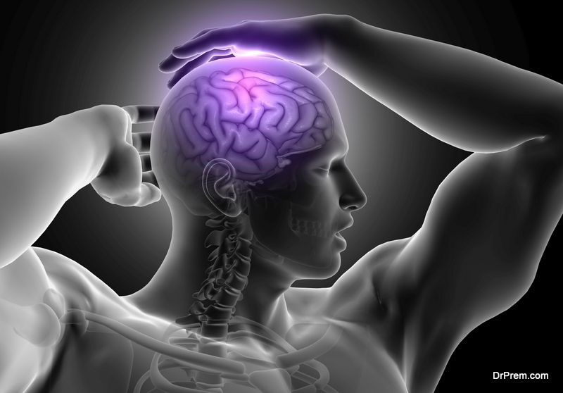 Grey Matter In Your Brain