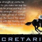 Top Best 23 Race Horses Captions with Texts and Photos