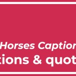 Top Best 8 Race Horses Captions part II with Texts and Photos