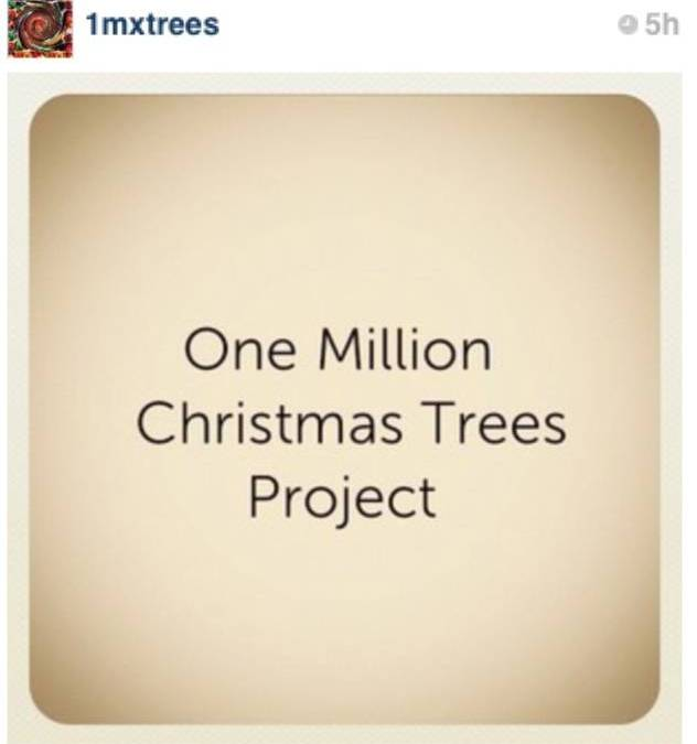 1 million Christmas Trees project on Instagram