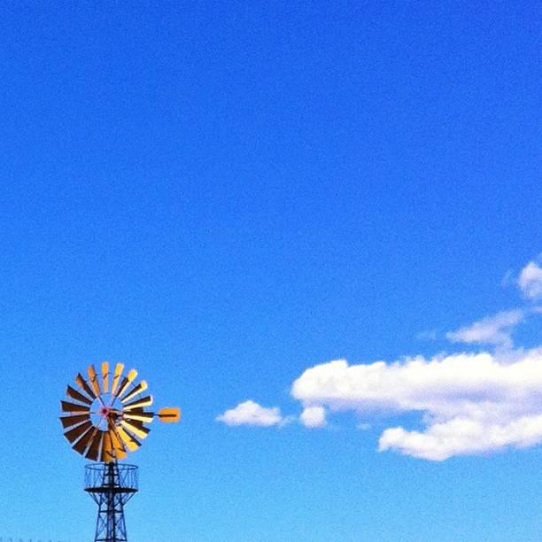 En mi mundo, los girasoles fabrican nubes