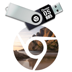 Chrome OS usb installer disk
