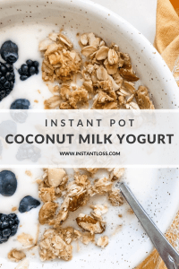 Instant Pot Coconut Milk Yogurt instantloss.com
