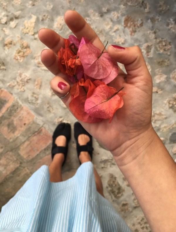 A Crêuza Verezzi, flowers
