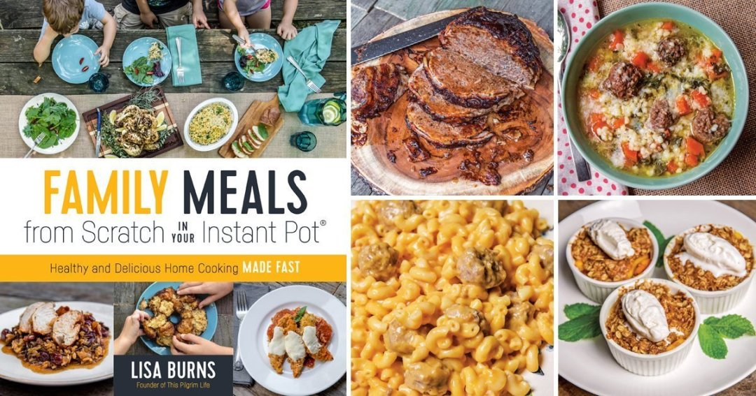 cookbook review family meals from scratch in your instant pot