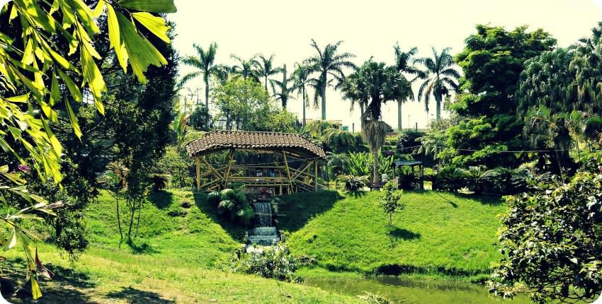 Puente en el Parque de la Vida, rodeado de palmas y pasando por encima de un curso de agua