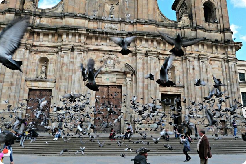 Envol de pigeons devant la cathédrale Primada sur la place Bolívar de Bogotá