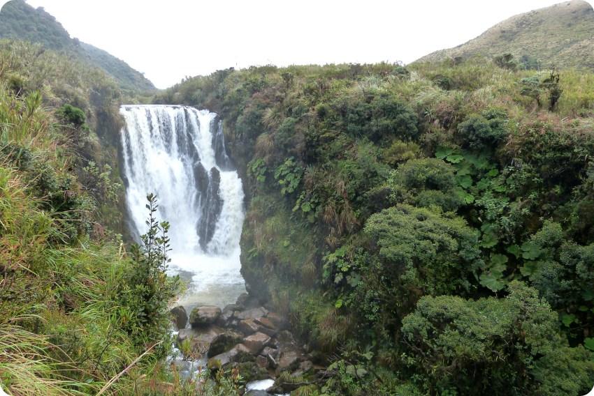 Cascada rodeada de árboles en el Parque natural Puracé