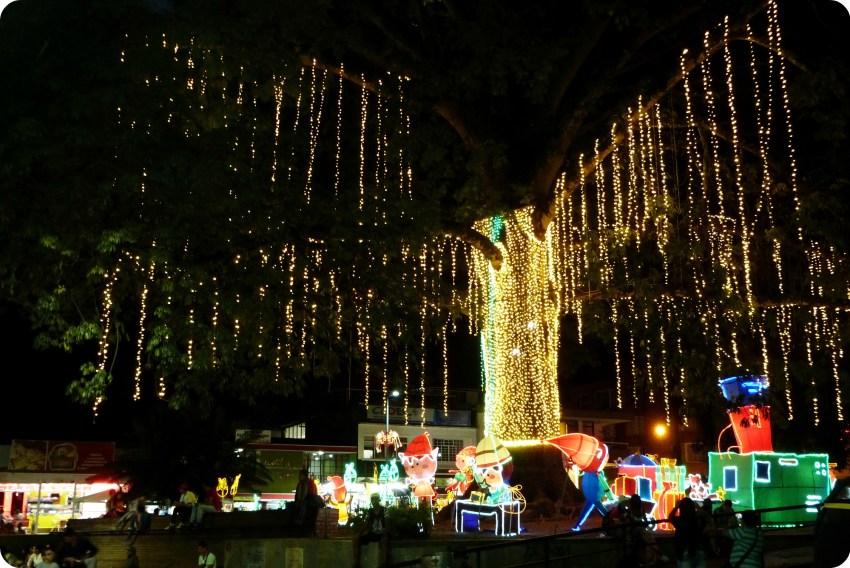 arbre illuminé du Parque Sucre d'Armenia