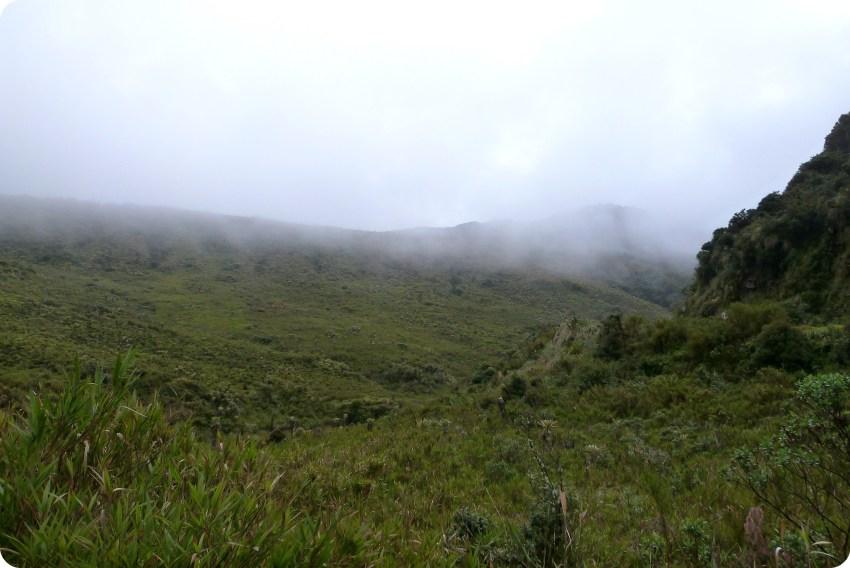 paisaje nebulosos del paramo en el parque natural Puracé