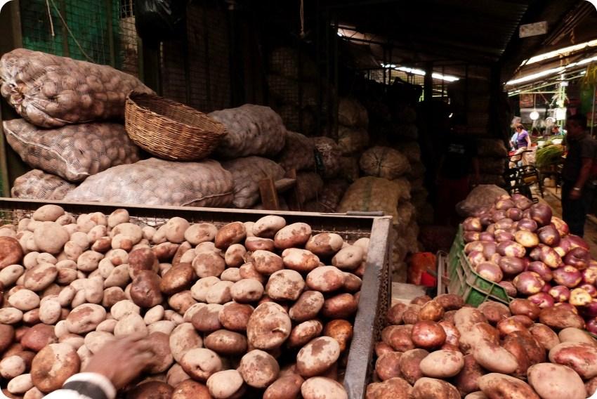 etal de pommes de terre au marché de Bogotá