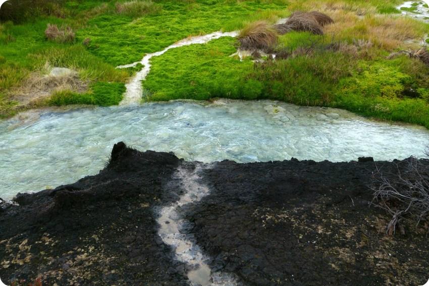 curso de agua termal entre pasto y roca en los termales de san juan en el parque natural Puracé