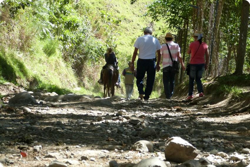 caballo en el camino hacia el valle de Cocora