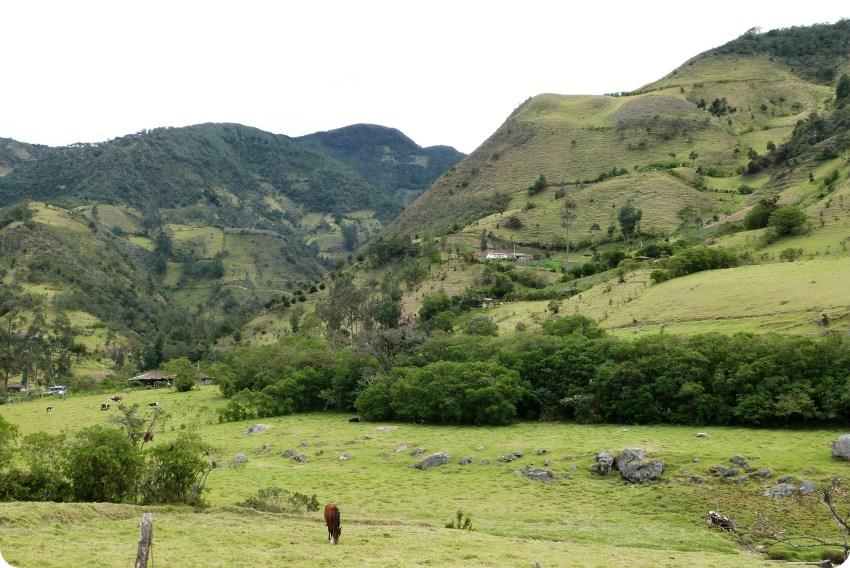 paysage guambiano avec des montagnes et un cheval dans un champs à silvia