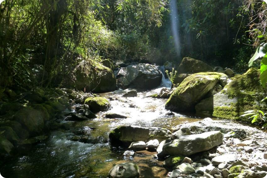 pierres du río Quindío dans la vallée de Cocora