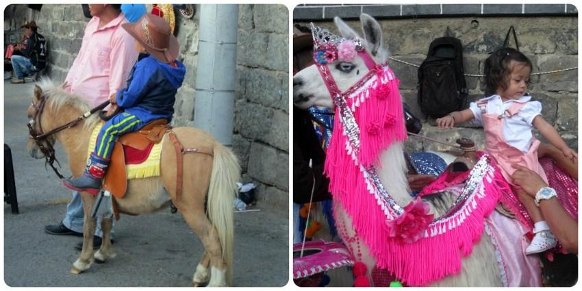 pony y llama en el Santuario de Las Lajas de Ipiales