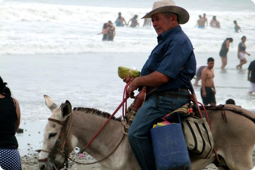 zoom en el vendedor de tamales en su burro en la playa de Pedernales