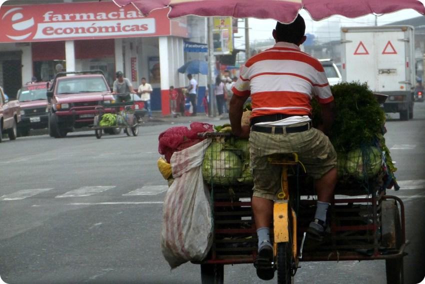 vendeur de légumes à vélo sur la route vers Pedernales
