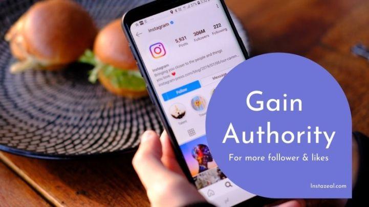 instagram authority grow