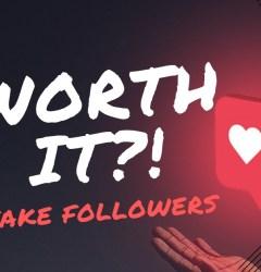 instagram fake follower